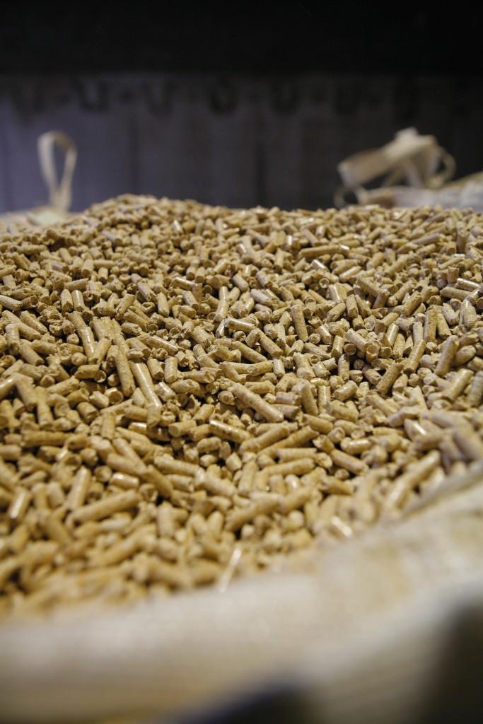 Die Pfeifer Group ist der größte Produzent von Holzpellets in Österreich. Bildnachweis: Pfeifer Group/Andreas Friedle (Abdruck honorarfrei)