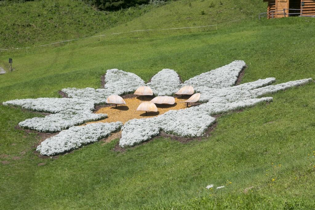 Geschätzte 80.000 Blüten hat das Edelweiß-Emblem.  Bildnachweis: Sennhütte (Abdruck honorarfrei)