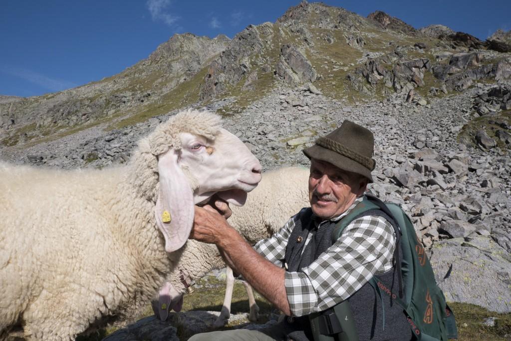 Der Ötztaler Fridolin Santer ist Hirte mit Leib und Seele. Bildnachweis: Tiroler Schafzuchtverband (Abdruck honorarfrei)